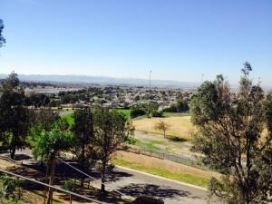100mc view