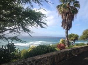Hawaii9